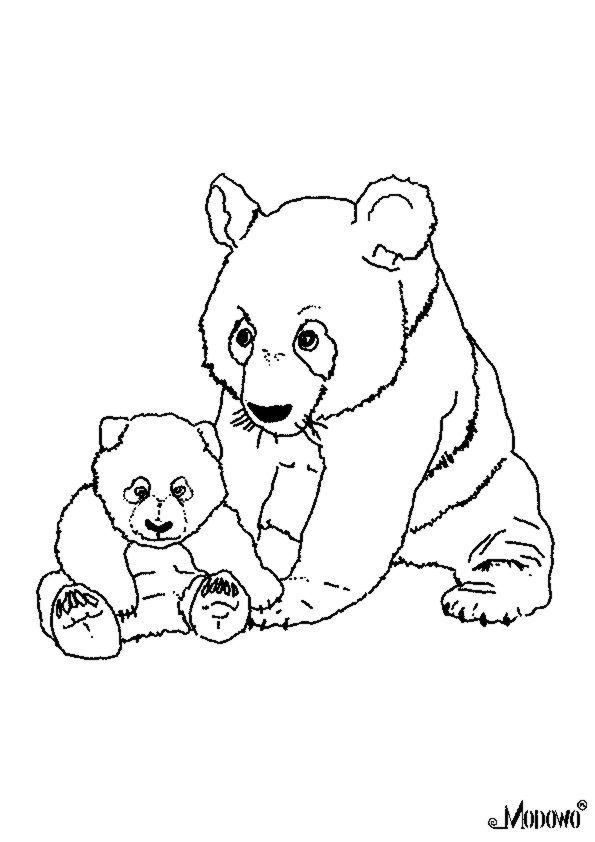 animals for coloring  zwierzęta do kolorowania  panda